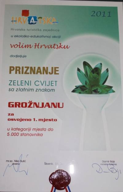 GROŽNJAN WINNER Green Flower
